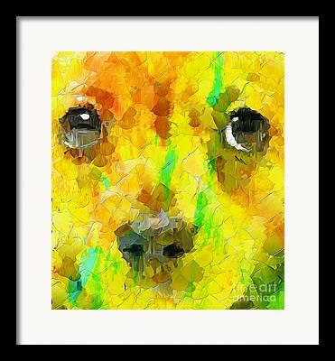 Mixed Labrador Retriever Digital Art Framed Prints