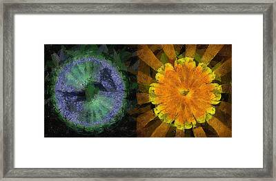 Nondefunct Surface Flowers  Id 16165-202353-95040 Framed Print by S Lurk