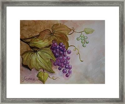 Nonnie's Grapes Framed Print by Yvonne Kinney