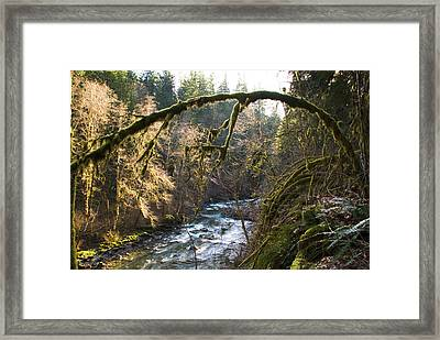 Framed Print featuring the photograph Nooksack River by Yulia Kazansky
