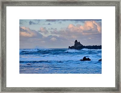 Norcal Zen Framed Print
