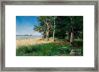 Nordic Coastal Landscape Framed Print by Celestial Images