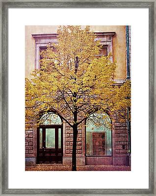 Nordic Fall Framed Print by JAMART Photography