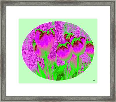 Noric House Tulips Framed Print by Will Borden