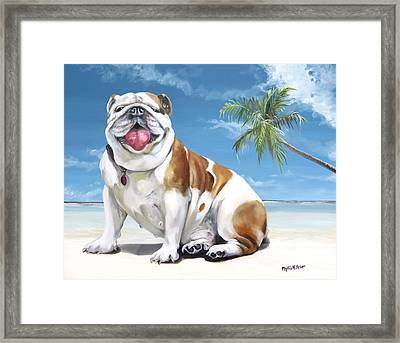 Norma Jean The Key West Puppy Framed Print by Phyllis Beiser