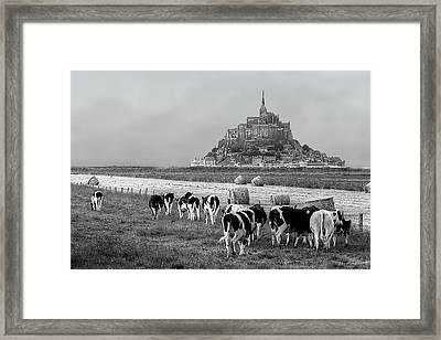 Normandy Framed Print