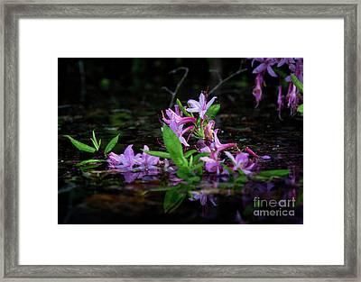 Norris Lake Floral Framed Print
