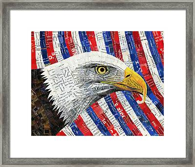 North American Bald Eagle Framed Print