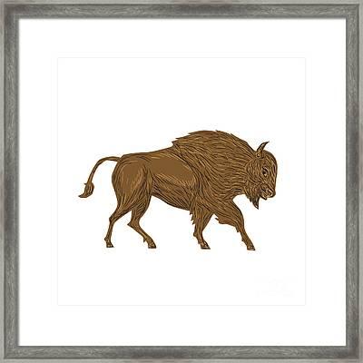 North American Bison Buffalo Charging Retro Framed Print