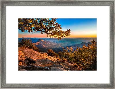 North Branch Framed Print
