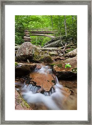 North Carolina Blue Ridge Mountain Lush Summer Stream Framed Print by Mark VanDyke