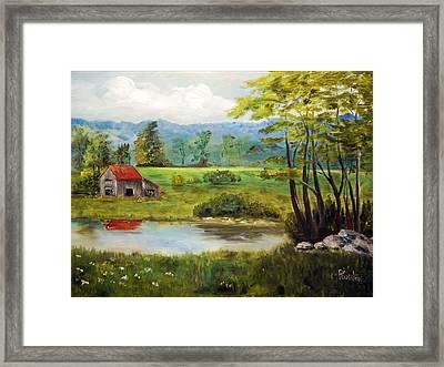 North Carolina Farm Framed Print by Phil Burton