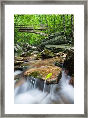 North Carolina Mountain Stream Beneath Tanawha Trail Wooden Bridge Framed Print by Mark VanDyke