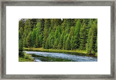 North Fork Of The Flathead Framed Print