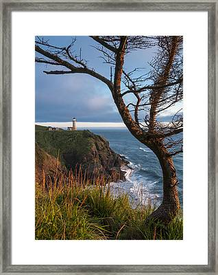 North Head Lighthouse 2 Framed Print by Greg Vaughn