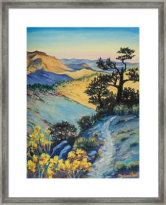 North Of Walker Pass On The Pct Framed Print