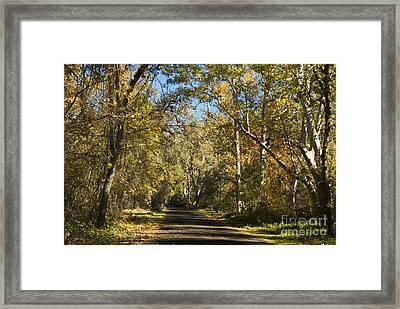 North Park Drive Framed Print by Richard Verkuyl