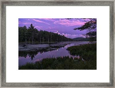 North Pond Blue Moon Framed Print