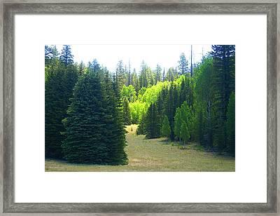 North Rim Landscapes Framed Print