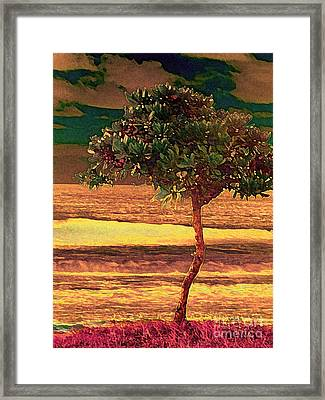 North Shore Gold Framed Print