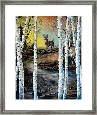 North Shore Hidden Creek Two Framed Print