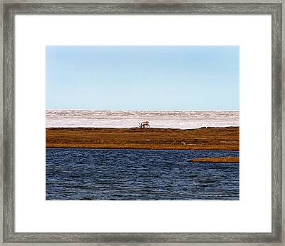 North Slope Framed Print