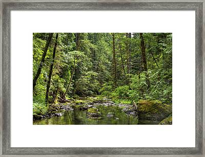 North Souixon Creek Framed Print