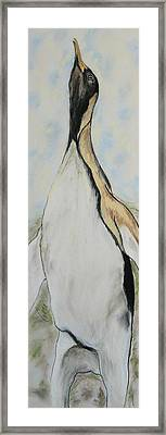 Northern Bliss Framed Print by Cori Solomon