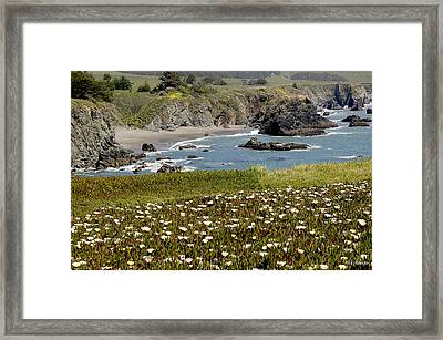 Northern California Coast Scene Framed Print by Mick Anderson