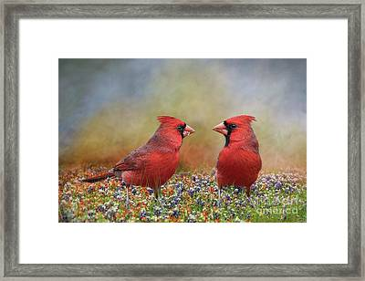Northern Cardinals In Sea Of Flowers Framed Print by Bonnie Barry