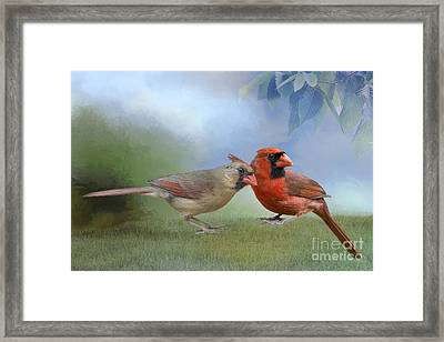 Northern Cardinals On A Spring Day Framed Print by Bonnie Barry
