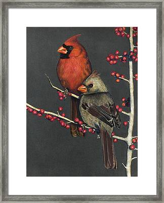 Northern Cardinals On Possum Haw Holly Framed Print