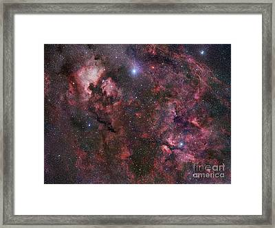 Northern Cygnus Framed Print by Robert Gendler