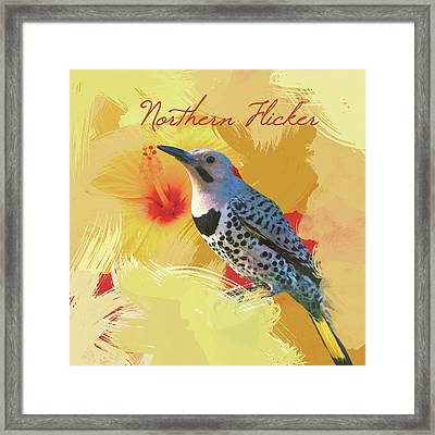 Northern Flicker Watercolor Photo Framed Print by Heidi Hermes