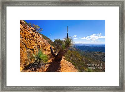 Northern Flinders Ranges And The Abc Range Framed Print by Bill  Robinson