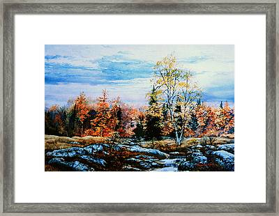 Northern Gold Framed Print
