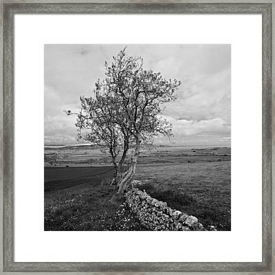 Northern Ireland 19 Framed Print