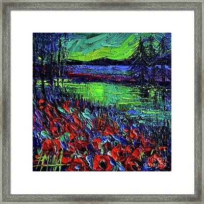 Northern Lights Embracing Poppies Framed Print by Mona Edulesco