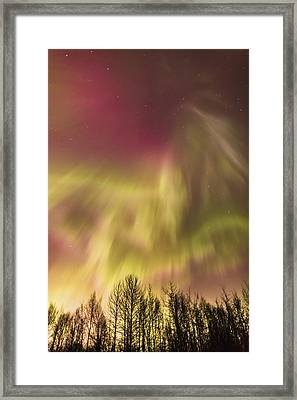 Northern Lights In The Sky Above Cook Framed Print