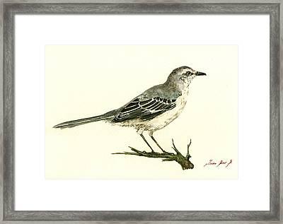 Northern Mockingbird Framed Print by Juan  Bosco