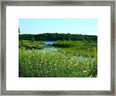 Northern Ontario 1 Framed Print