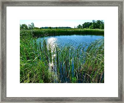 Northern Ontario 2 Framed Print