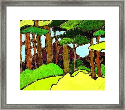 Northern Pathway Framed Print