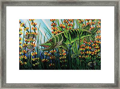 Northern Pike Framed Print by Bob Crawford