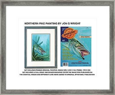 Northern Pike Original Framed Print by Jon Q Wright