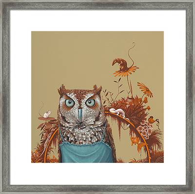 Northern Screech Owl Framed Print by Jasper Oostland