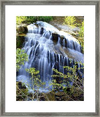 Northfork Falls Framed Print by Marty Koch
