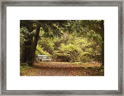Northumberland, England Park Bench Framed Print by John Short