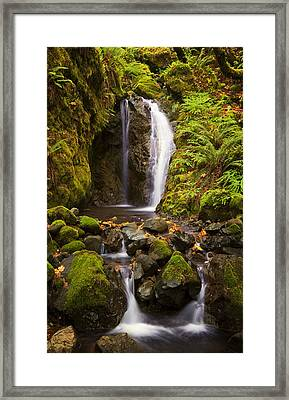 Northwest Paradise Framed Print