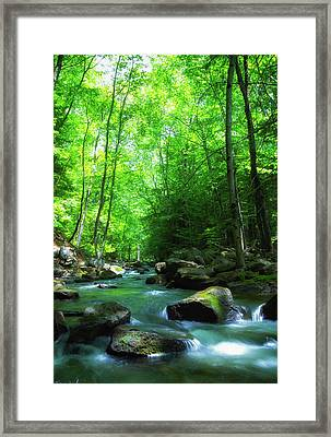 Northwood Brook Framed Print
